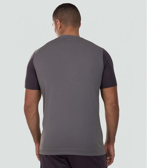 Camiseta Irlanda Vapodri graphic grey