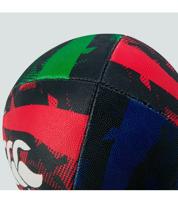 Balón talla 5 British & Irish Lions negro