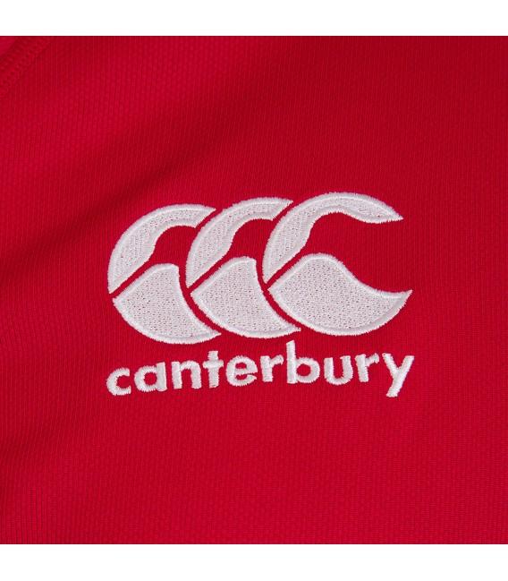 Camiseta rugby British & Irish Lions roja